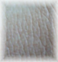 P1130707